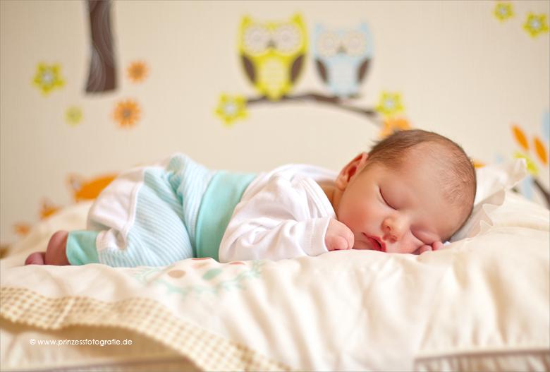 Babyfotografie Frankenberg