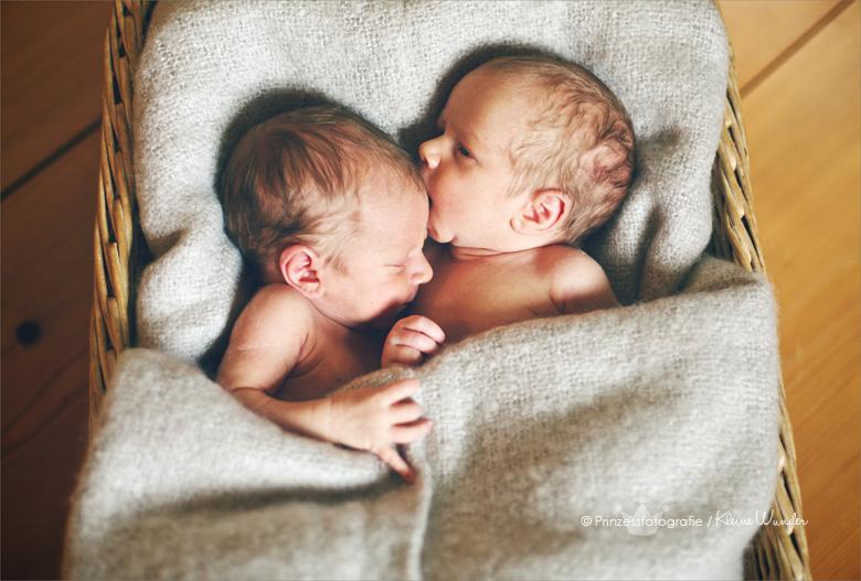 Neugeborenenfotografin Freiberg