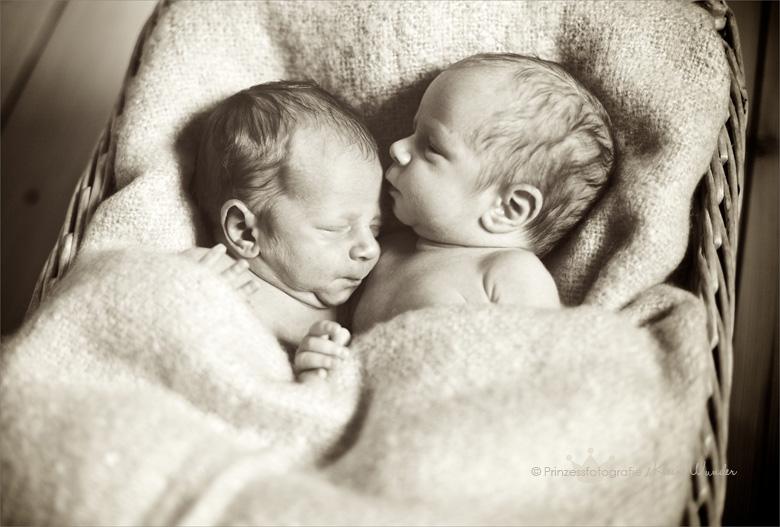 Babyfotograf Freiberg