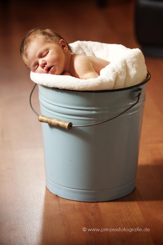 Babybilder Radebeul
