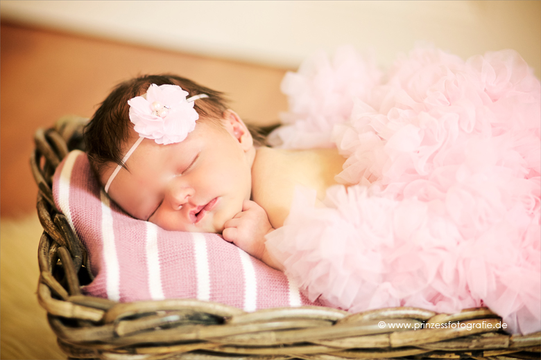 Babyfotografie Radebeul