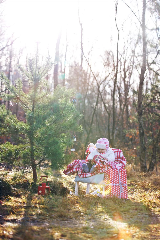 Weihnachtsshooting 2