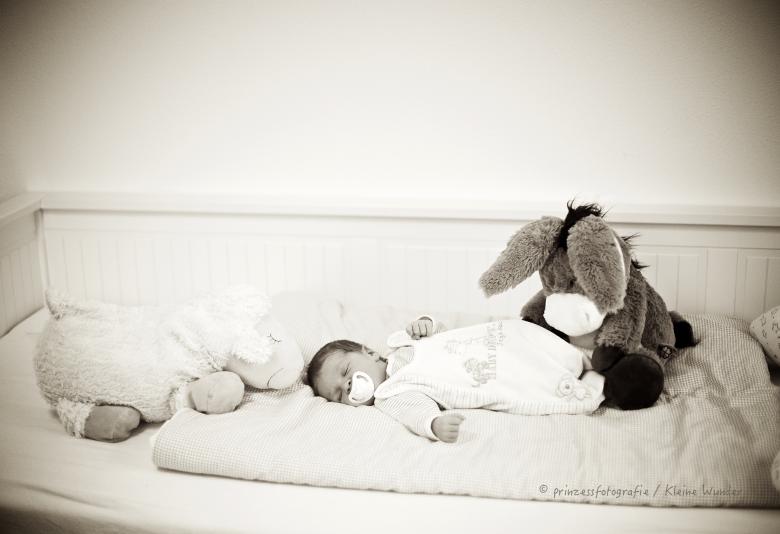 Babyfotos 27